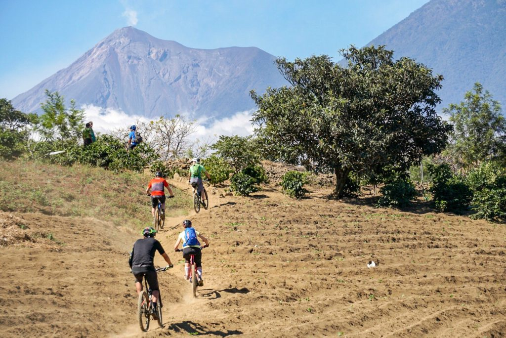 Ride through coffee fields overlooking volcanoes in Guatemala